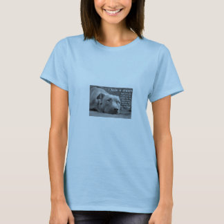 'I have a dream' pit bull baby doll T T-Shirt