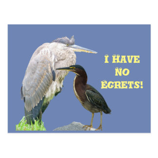 I Have No Egrets! Postcard