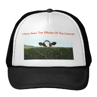I Have Seen The Whole Of The Internet - Cow Cap