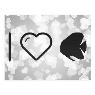 I Heart Butterfly Fishes Postcard
