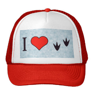 I Heart Ducks Cap