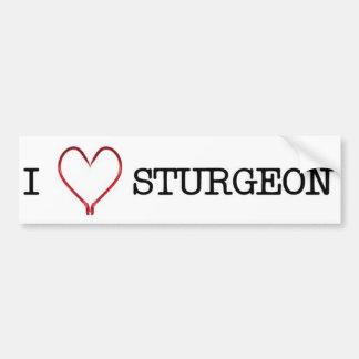 I [Heart] Sturgeon Bumper Sticker