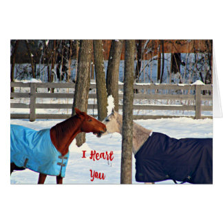 I Heart You Card Valentine For Horse Lovers