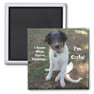 I Know What You're Thinking..., I'm Cute! Square Magnet