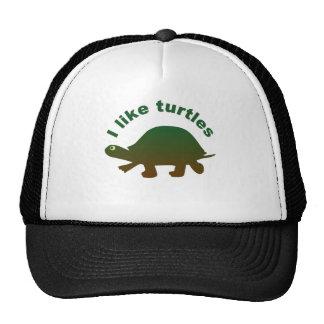 I like turtles cap