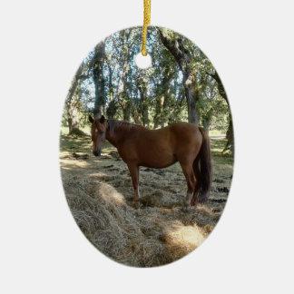 I love a horse ceramic oval decoration