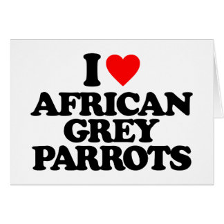 I LOVE AFRICAN GREY PARROTS GREETING CARDS