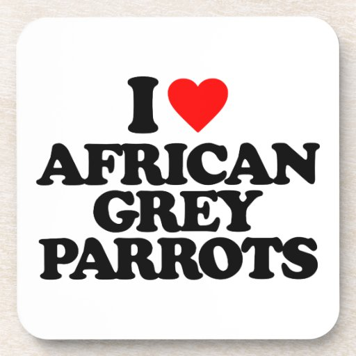 I LOVE AFRICAN GREY PARROTS DRINK COASTER