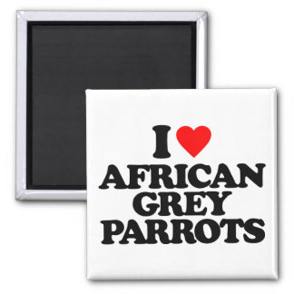 I LOVE AFRICAN GREY PARROTS MAGNETS