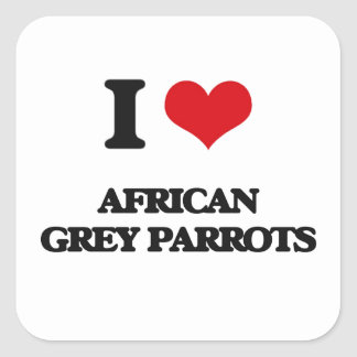 I love African Grey Parrots Square Sticker