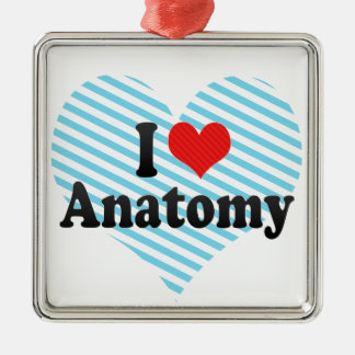 I Love Anatomy Metal Ornament