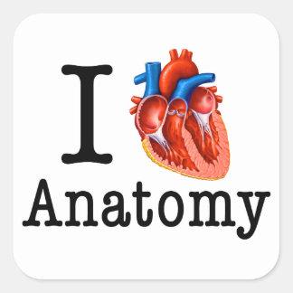 I love Anatomy Square Sticker