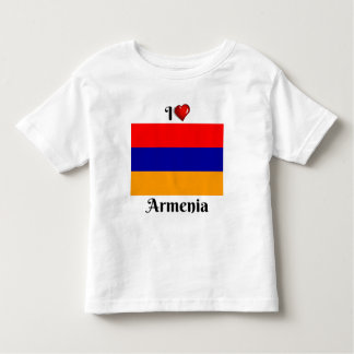 I Love Armenia Toddler T-Shirt