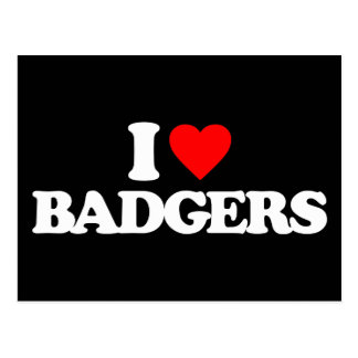 I LOVE BADGERS POSTCARDS
