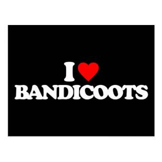 I LOVE BANDICOOTS POSTCARD