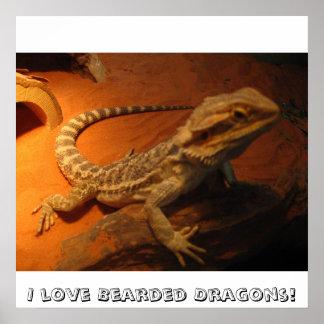 I love Bearded Dragons! Poster