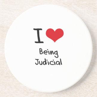 I love Being Judicial Coaster