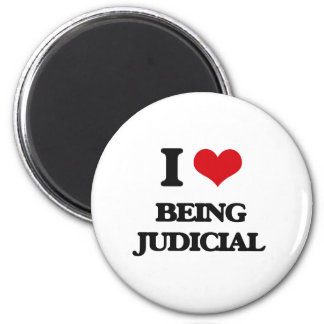 I love Being Judicial Magnet