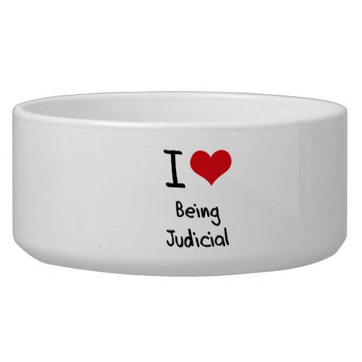 I love Being Judicial Pet Food Bowl