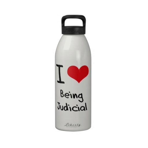 I love Being Judicial Drinking Bottle