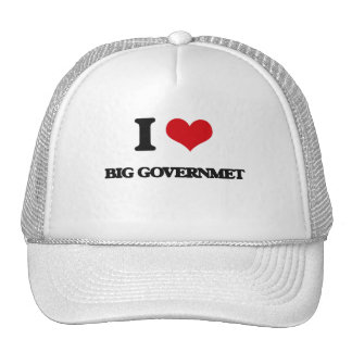 I Love Big Governmet Mesh Hat