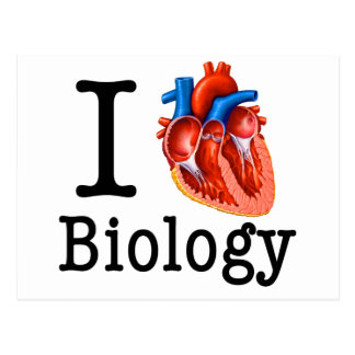 I Love Biology Postcard