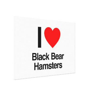 i love black bear hamsters stretched canvas print