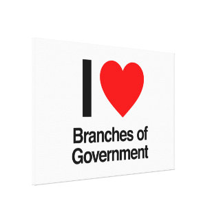 i love branches of government stretched canvas print