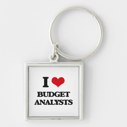 I love Budget Analysts Keychain