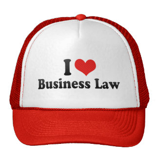 I Love Business Law Cap