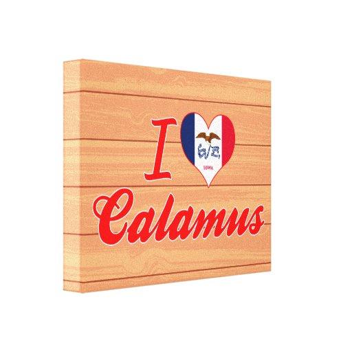 I Love Calamus, Iowa Canvas Prints