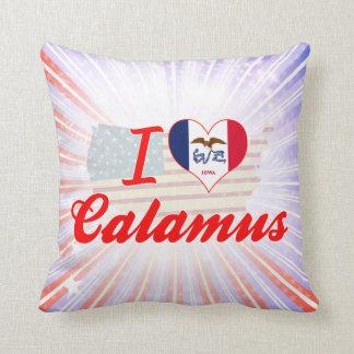 I Love Calamus Iowa Pillows