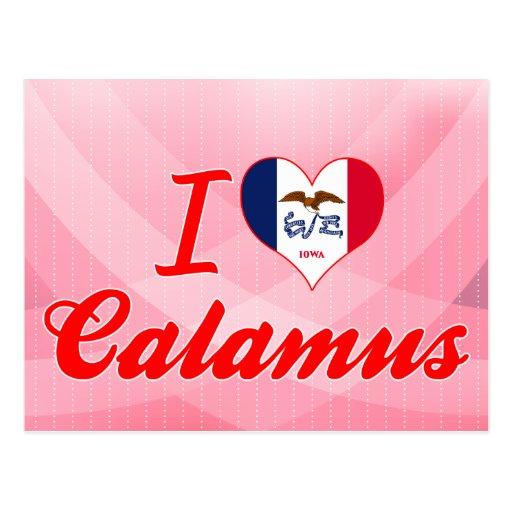 I Love Calamus, Iowa Post Card
