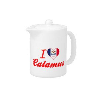 I Love Calamus, Iowa