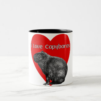I Love Capybara Mugs