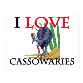 I Love Cassowaries Postcard