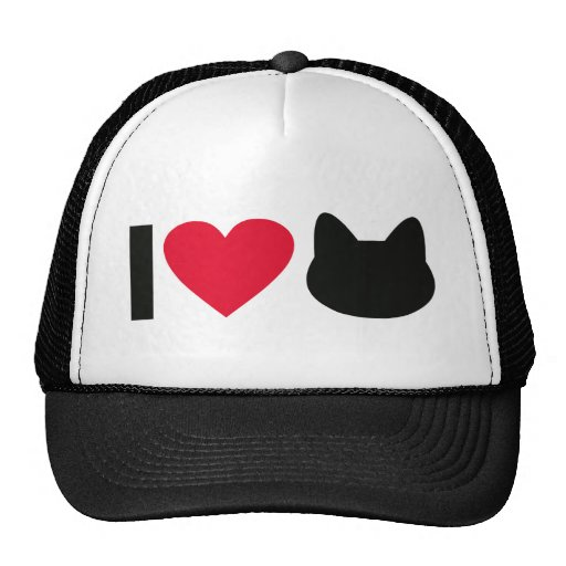 I love cats hats