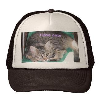 I love cats mesh hat