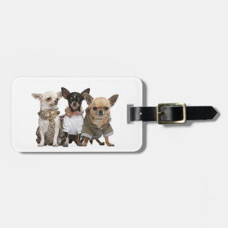 I love Chihuahuas Luggage Tag