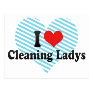 I Love Cleaning Ladys Post Card