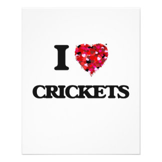 I love Crickets 11.5 Cm X 14 Cm Flyer
