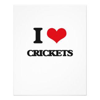 I love Crickets Custom Flyer