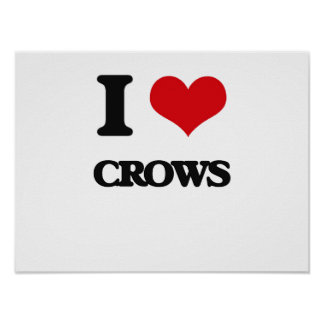 I love Crows Posters