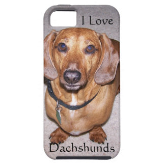 I Love Dachshunds iPhone 5 Case