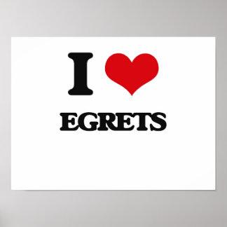 I love Egrets Poster