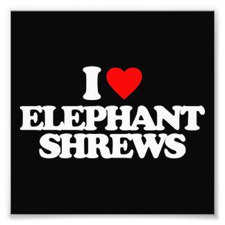 I LOVE ELEPHANT SHREWS PHOTOGRAPHIC PRINT