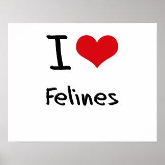I Love Felines Poster