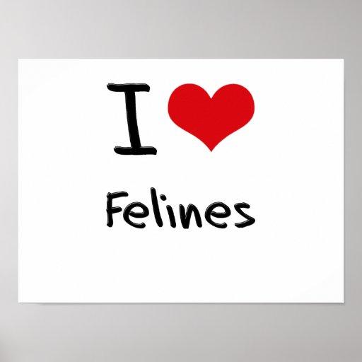 I Love Felines Posters