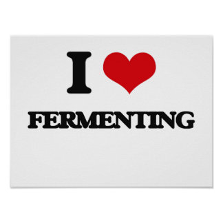I love Fermenting Posters
