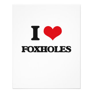 i LOVE fOXHOLES Custom Flyer